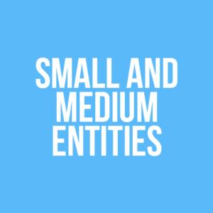 small and medium entities